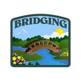 Bridging fun patch