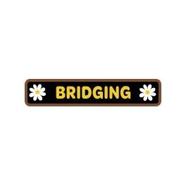 Bridging (bar)